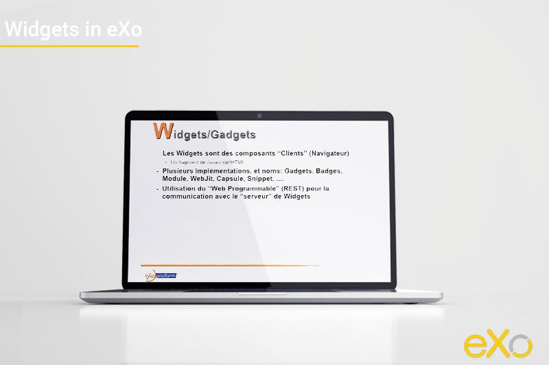 Widgets in eXo