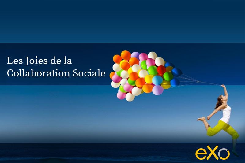 Les-joies-de-la-collaboration-sociale