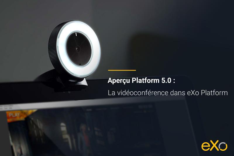 vidéoconférence, conférence web