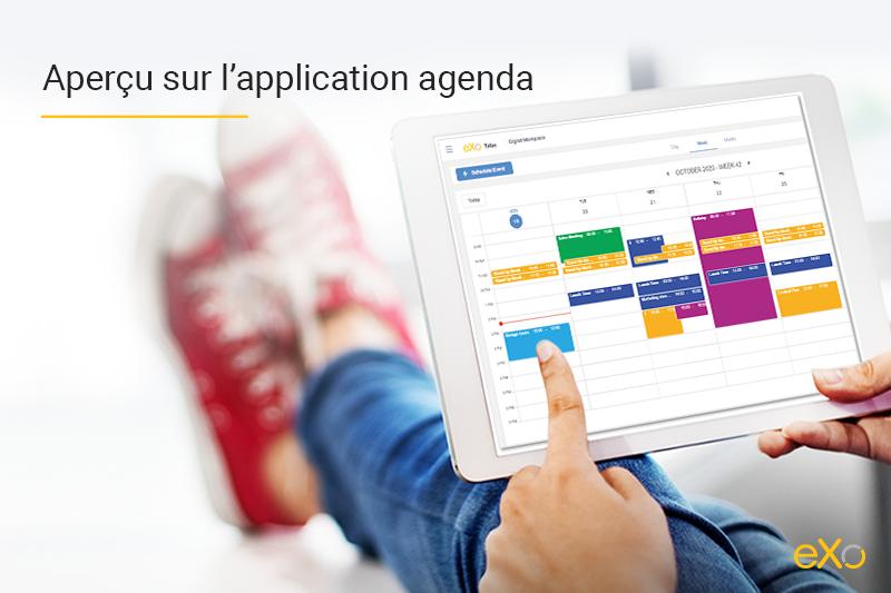 Vidéoconférence, Jitsi
